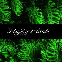 happy-plants